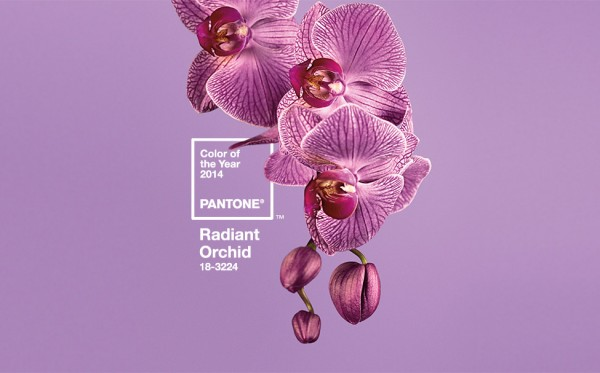 Pantone, Radiant Orchid, 2014 Color of the Year, Ebony Peoples Events & Design, Dallas Wedding Planner